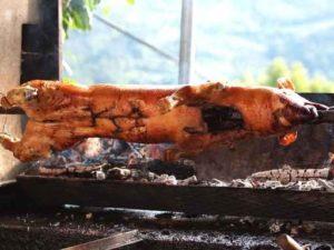 grilled pig